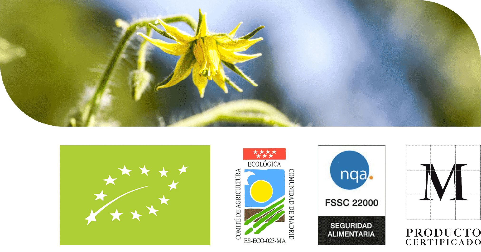 Flor de Tomate y Sellos de certificados ecológicos